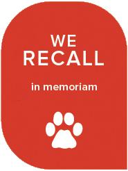 We Recall