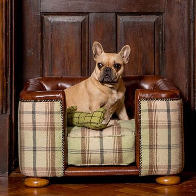 Burghley-Luxury-Dog-Chesterfield-Sofa-in-Tan-Leather-Sage-Tweed