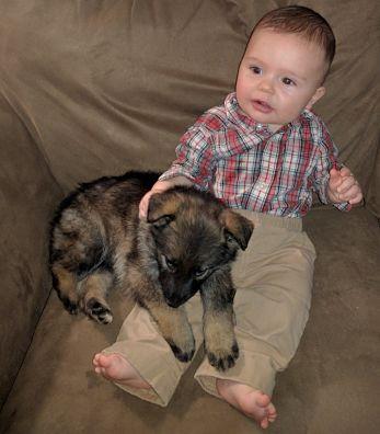 Melainie-Sick-Puppy